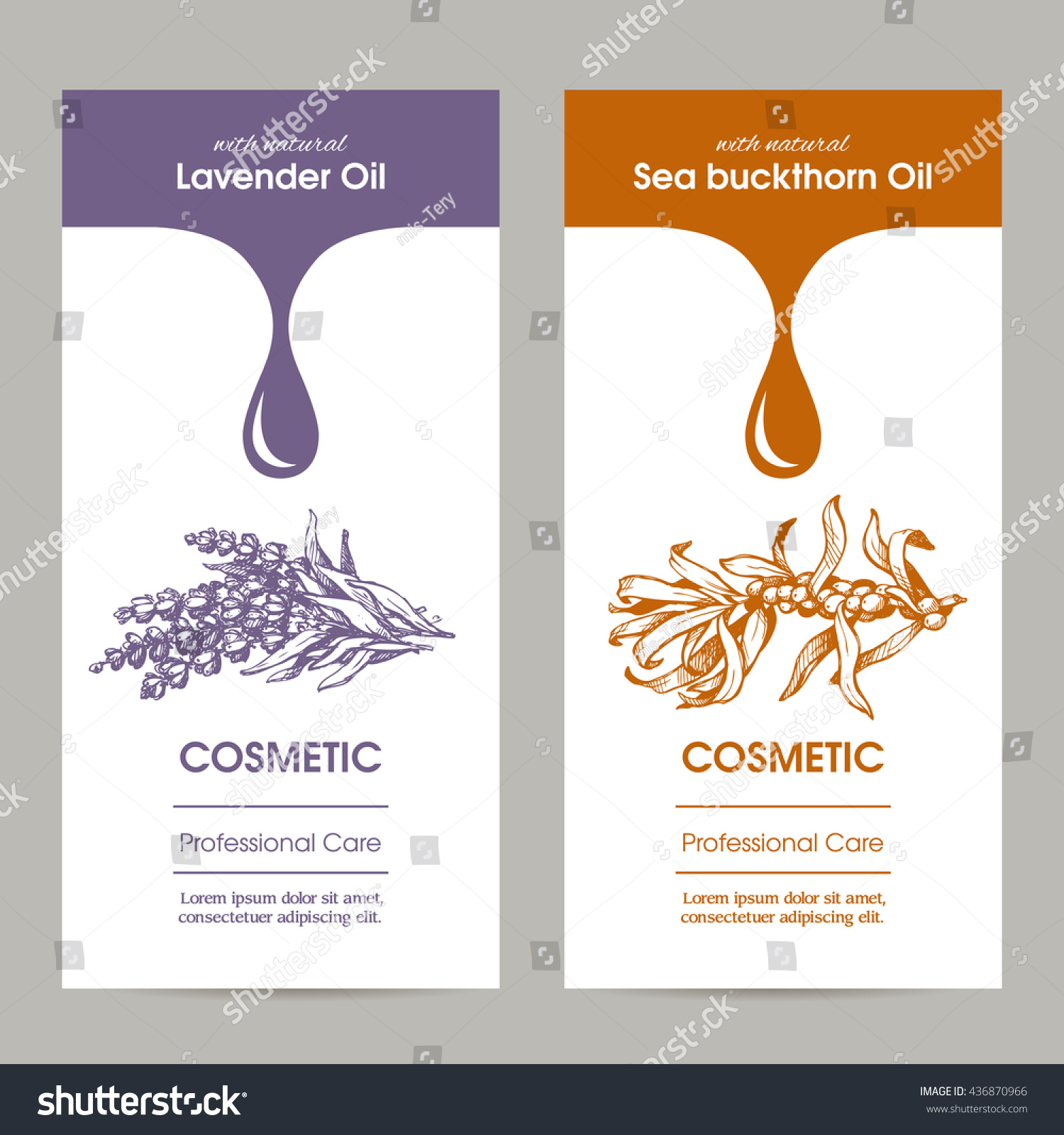Vector Set Templates Packaging Cosmetic Label Stock Vector (2018 ...