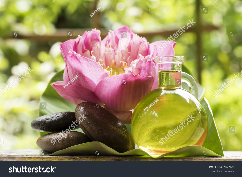 Lotus Essential Oil Fresh Properties Help Stock Photo Edit Now
