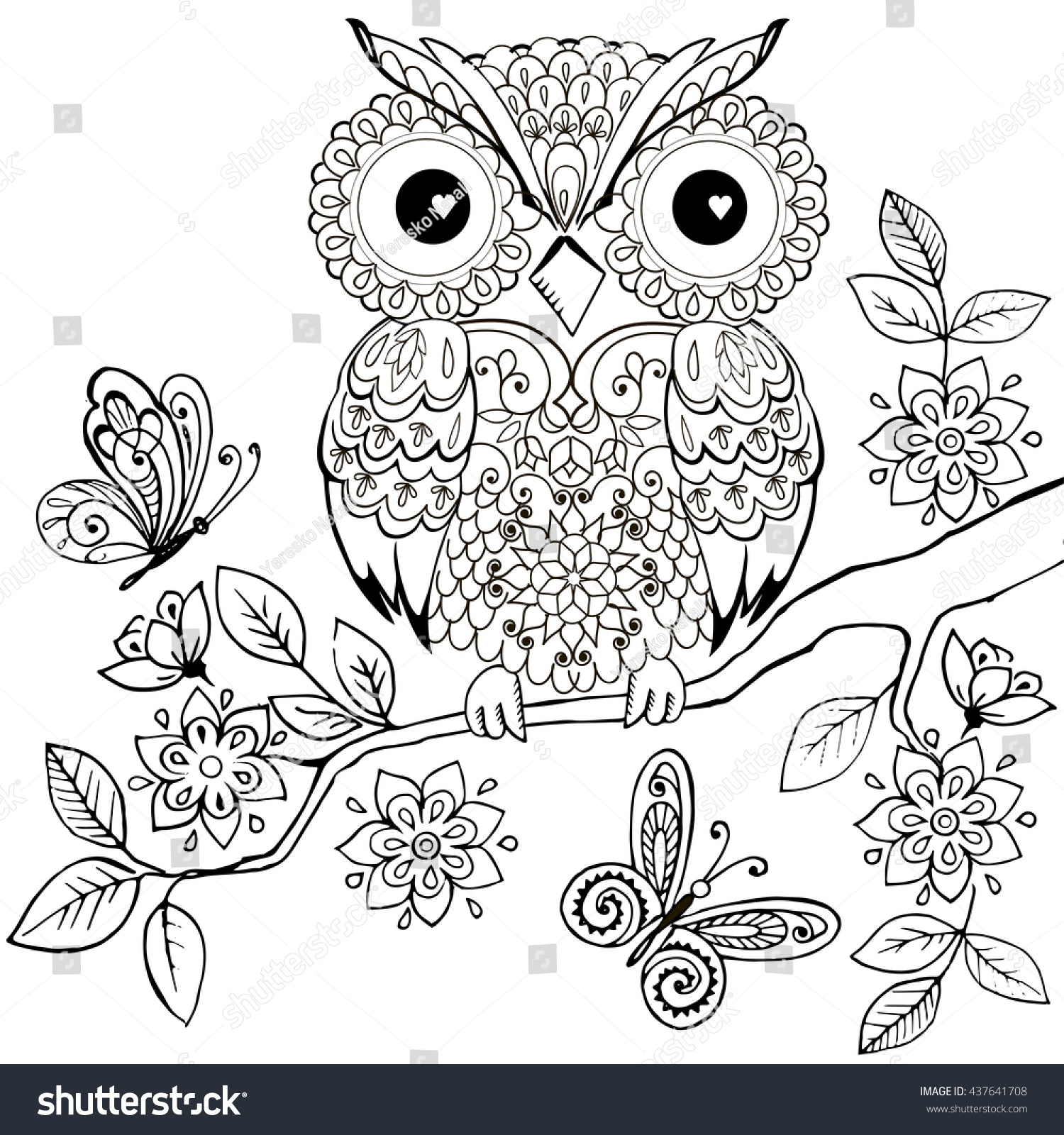 Decorative Owl On A Flowering Branch Coloring Book For Adults Hand Drawn