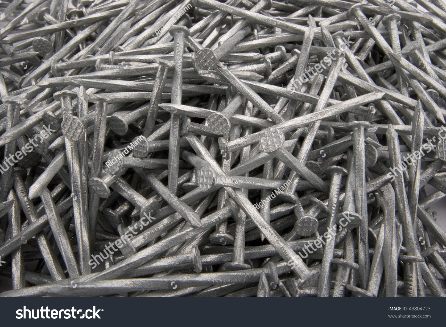 Carpenters Nails Stock Photo 43804723 Shutterstock