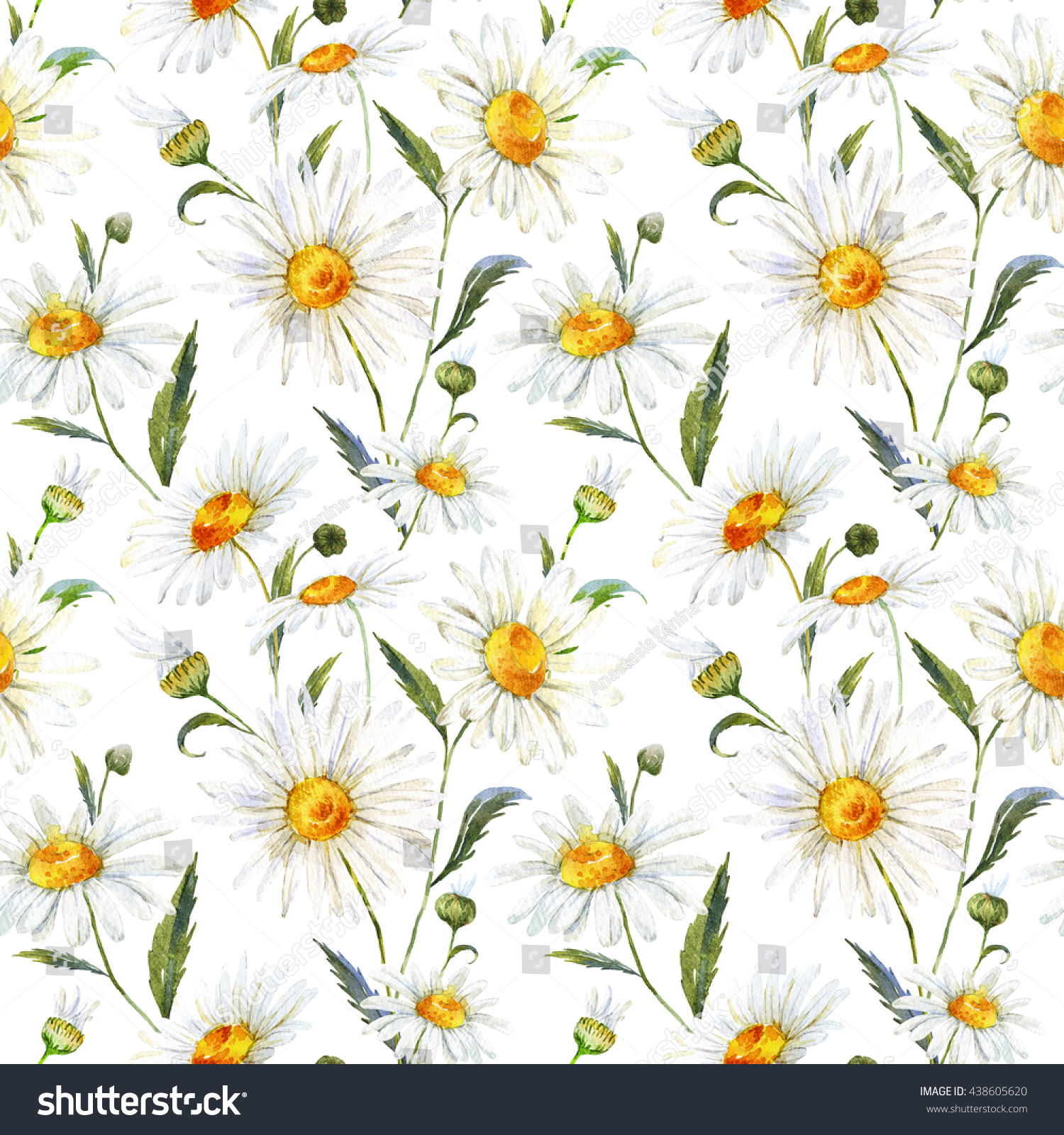 Watercolor floral pattern daisy white gentle stock illustration watercolor floral pattern daisy white gentle chamomile medicinal plant seamless pattern white izmirmasajfo