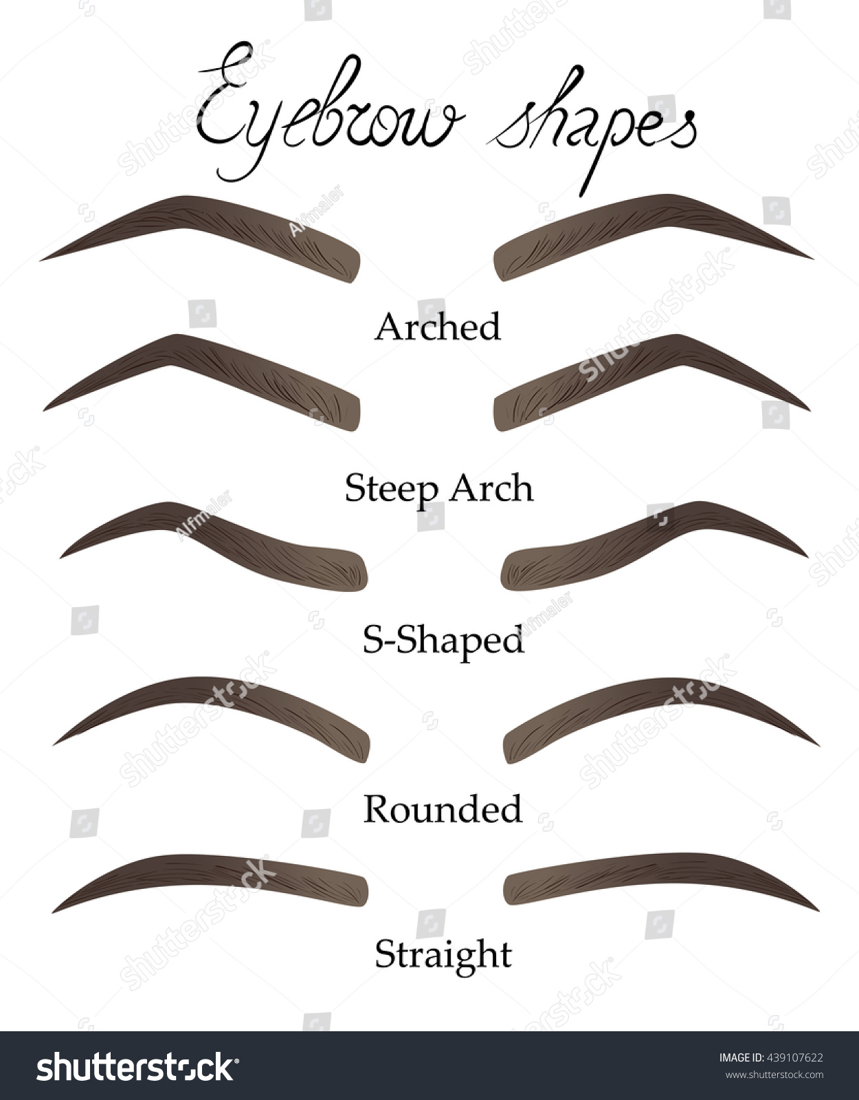 Female Eyebrows Different Shapes Eyes Forms Stock Illustration