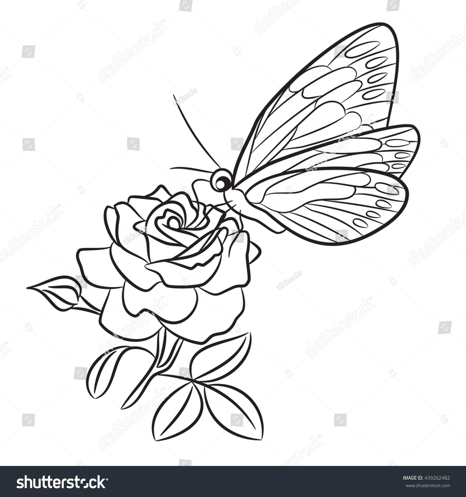 Line Drawing Butterfly Tattoo : Butterfly on blooming rose small bud stock vector