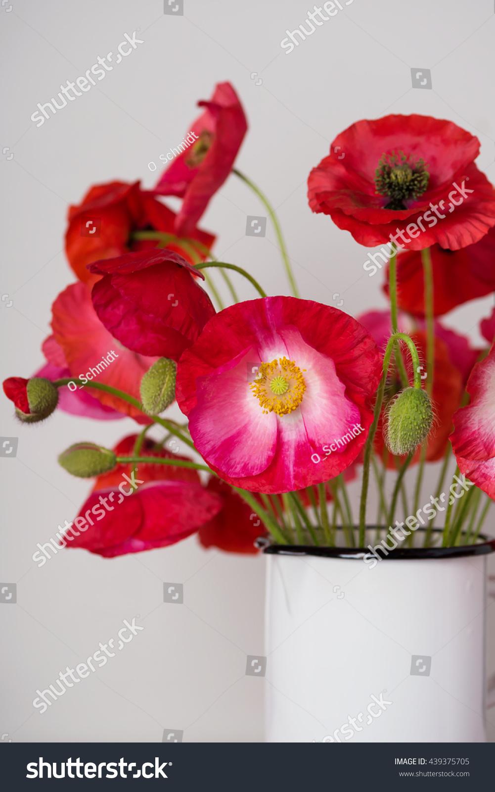 Poppy Flower Bouquet White Enamel Jar Stock Photo (Royalty Free ...