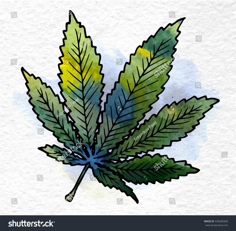 legalizing weed essay