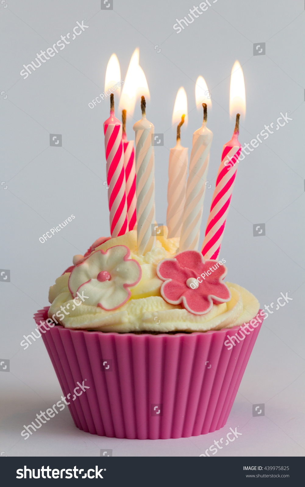 A Party Cupcake With Pink Candle And Pink Background Ez Canvas