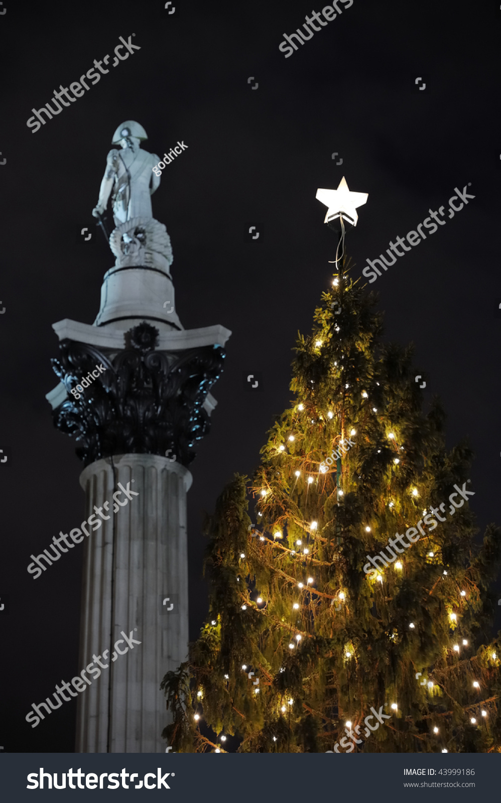 Norwegian Christmas Tree Trafalgar Square London Stock Photo (Edit ...