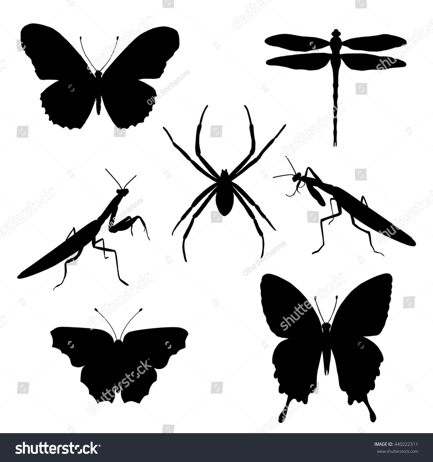 Vector set of silhouettes of insects butterflies spider mantises dragonfly Insect silhouette