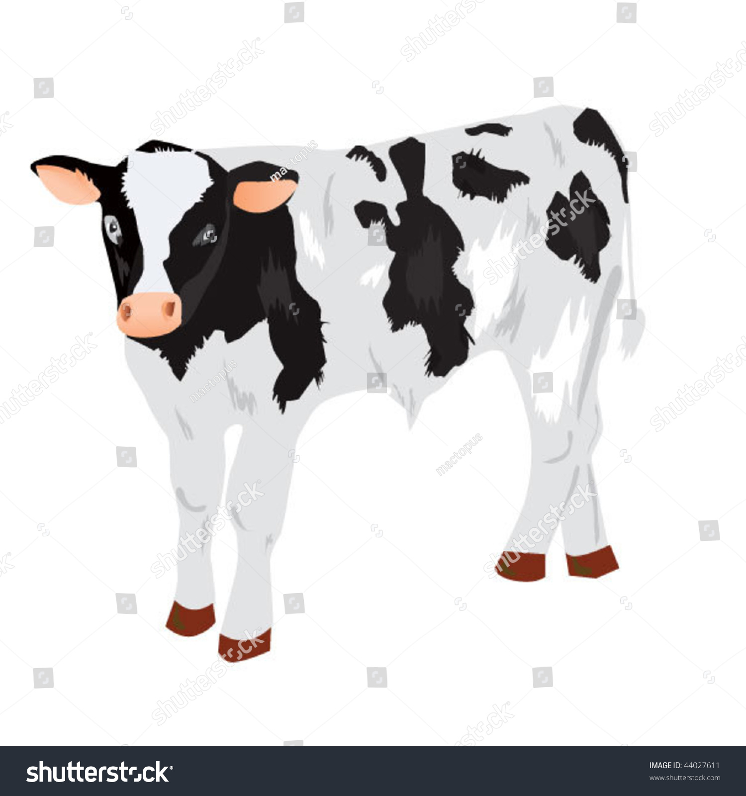 Little Cow Calf Vector Illustration Stock Vector 44027611 ... for Cow And Calf Clipart  70ref