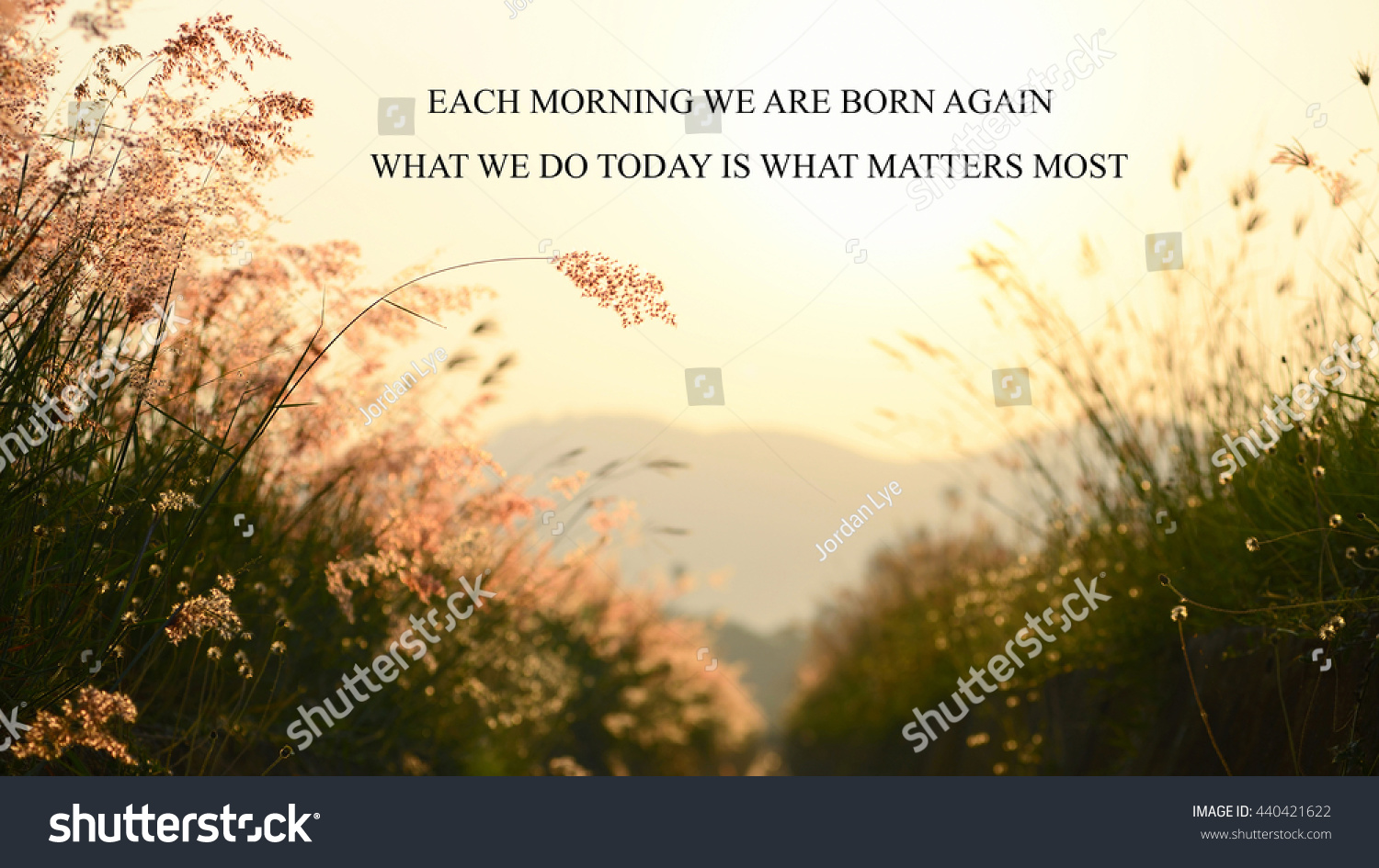 Inspirational Life Quote Phrase Each Morning Stock Photo Edit Now