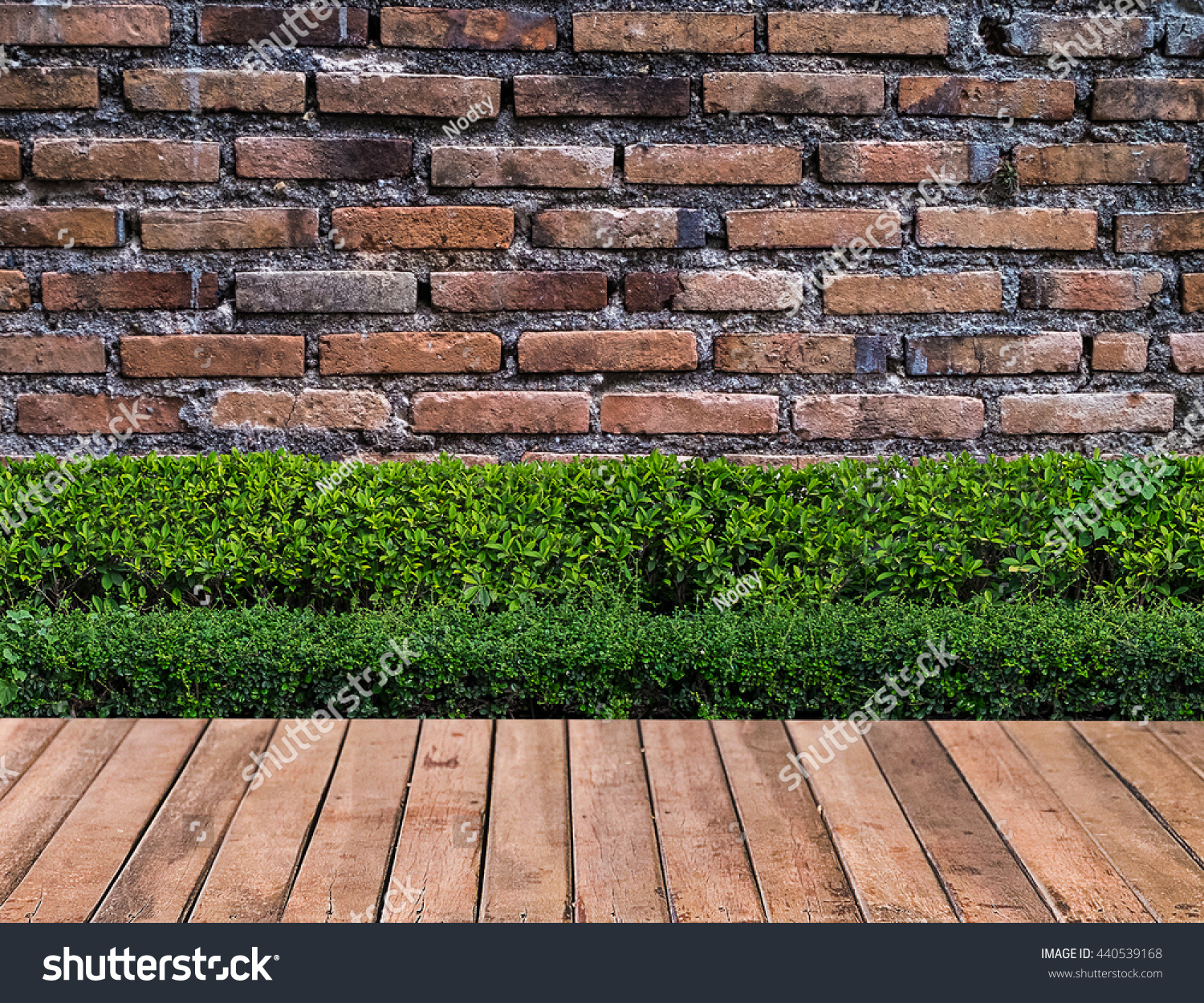 Wooden Flooring Plant Garden Decorative On Stock Photo 440539168 ...
