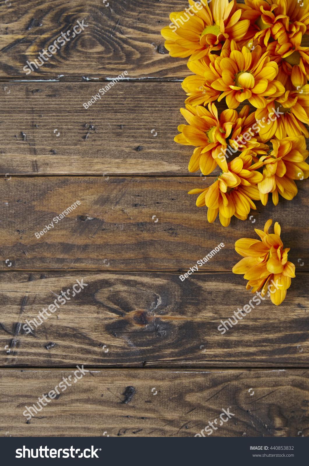Royalty Free Floral Border