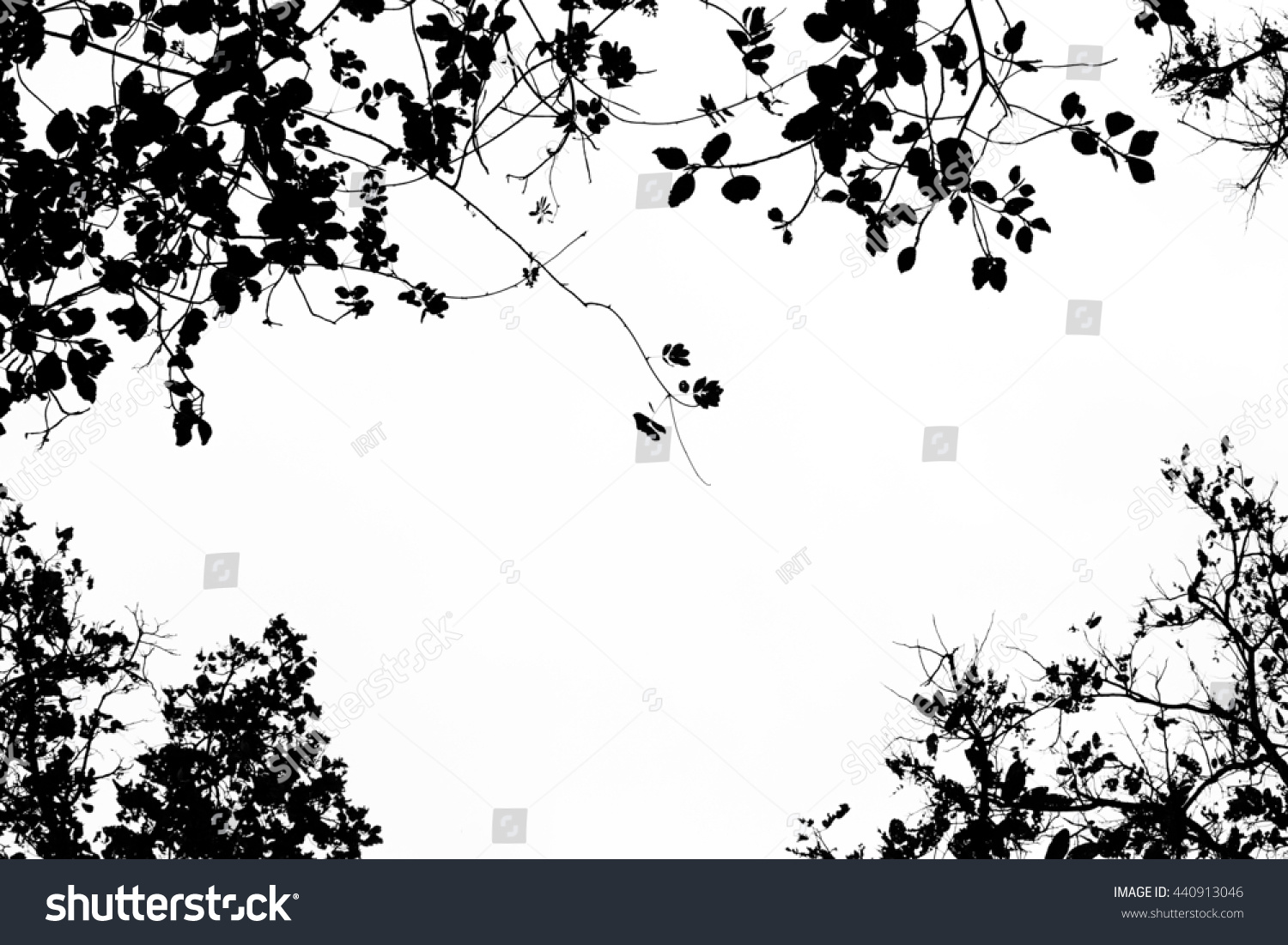 royaltyfree tree branch and leaves silhouette� 440913046