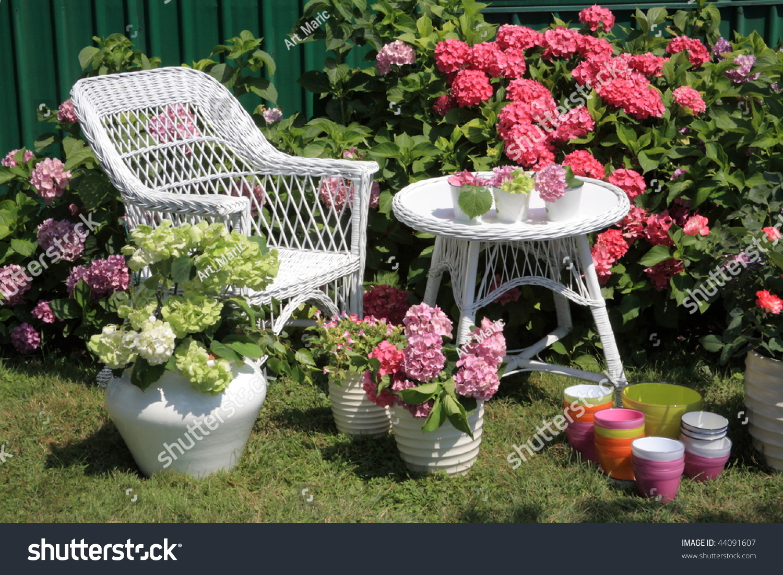 Hydrangea Garden Stock Photo 44091607 Shutterstock