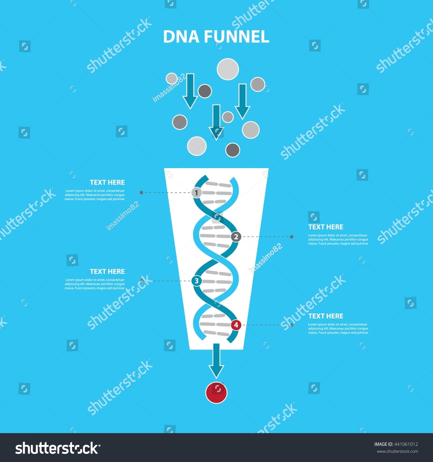 Vertical Conversion Funnel Dna Timeline Process Stock Vector ...