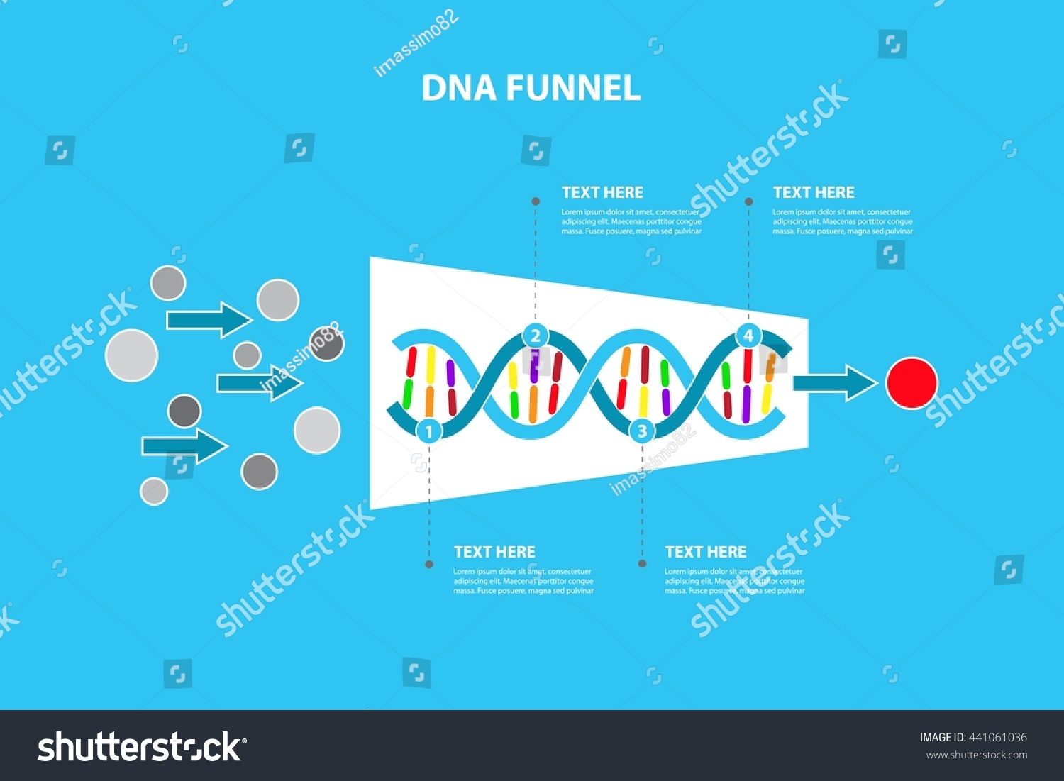 Horizontal Funnel Dna Timeline Process Template Stock Vector ...