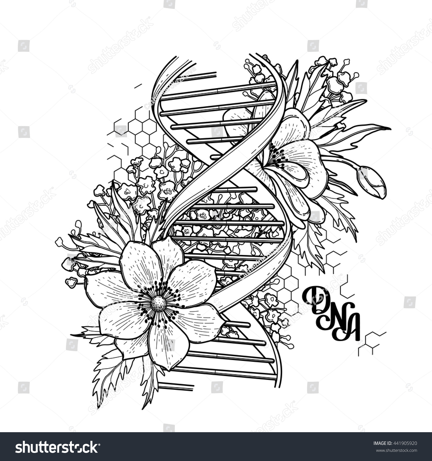 Graphic DNA structure with floral design isolated on white background.  Vector elements for scientific and