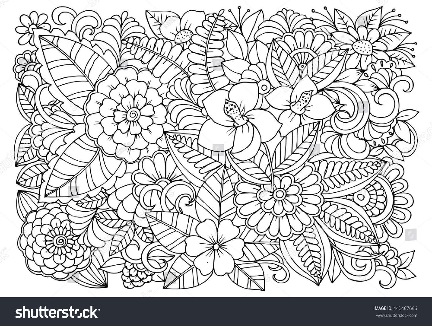 black white flower pattern coloring doodle stock vector 442487686