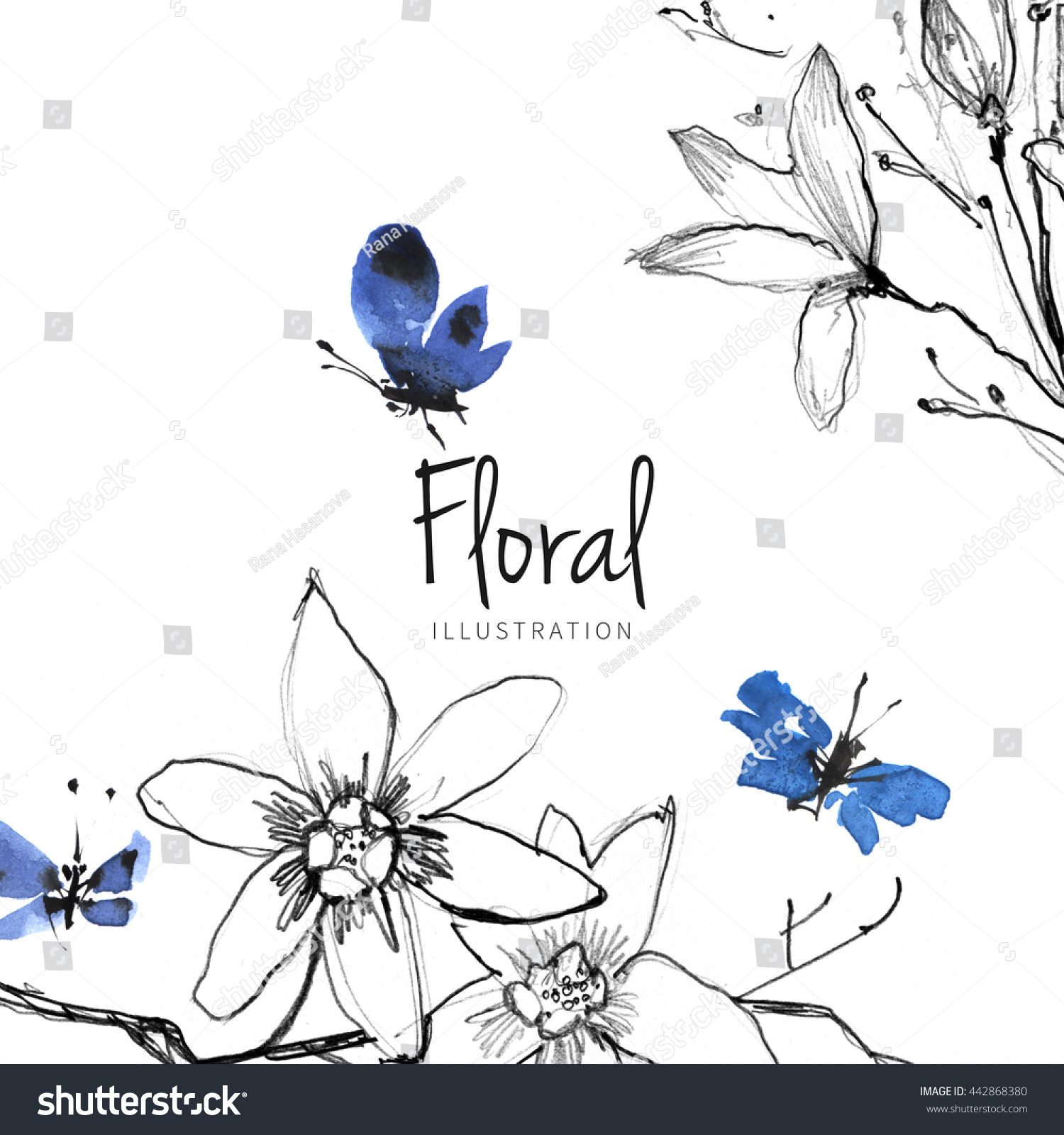 watercolor flower sketch butterfly on white stock illustration