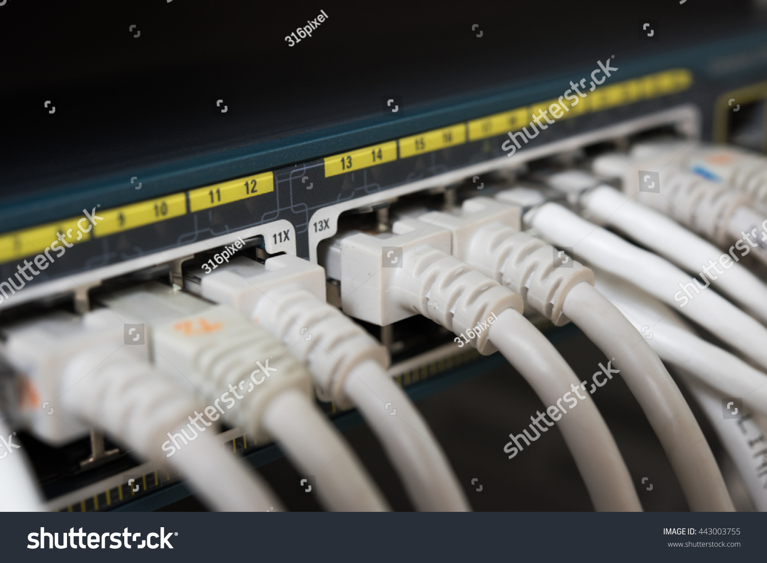 Shot Network Cables Data Center Utp Stock Photo Edit Now 443003755 Patch Panel Cable Management Together With Cord Cat 6 A Of In Connected To