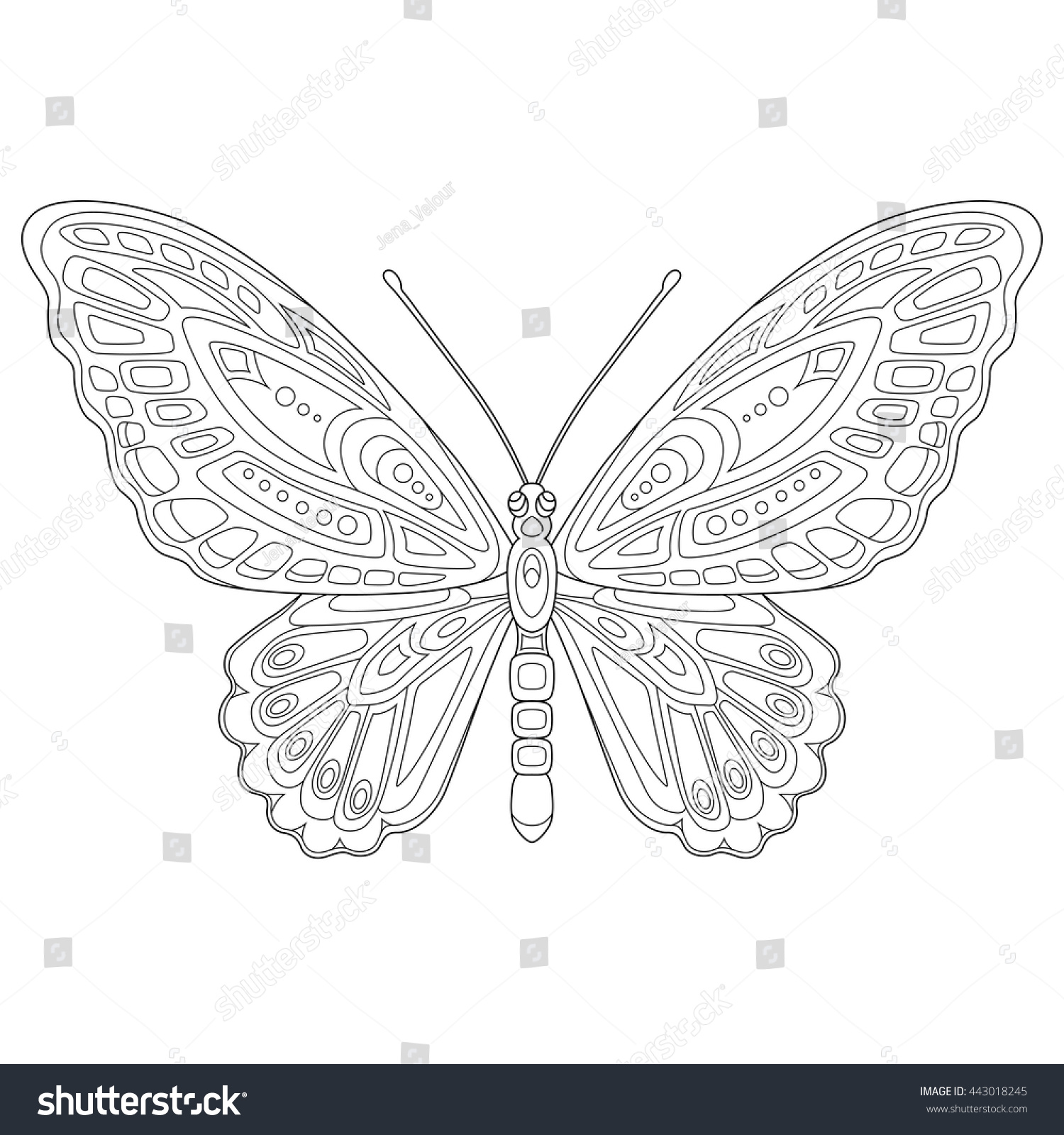 stock vector large exotic butterfly page of coloring book for adults and children art therapy outline drawing