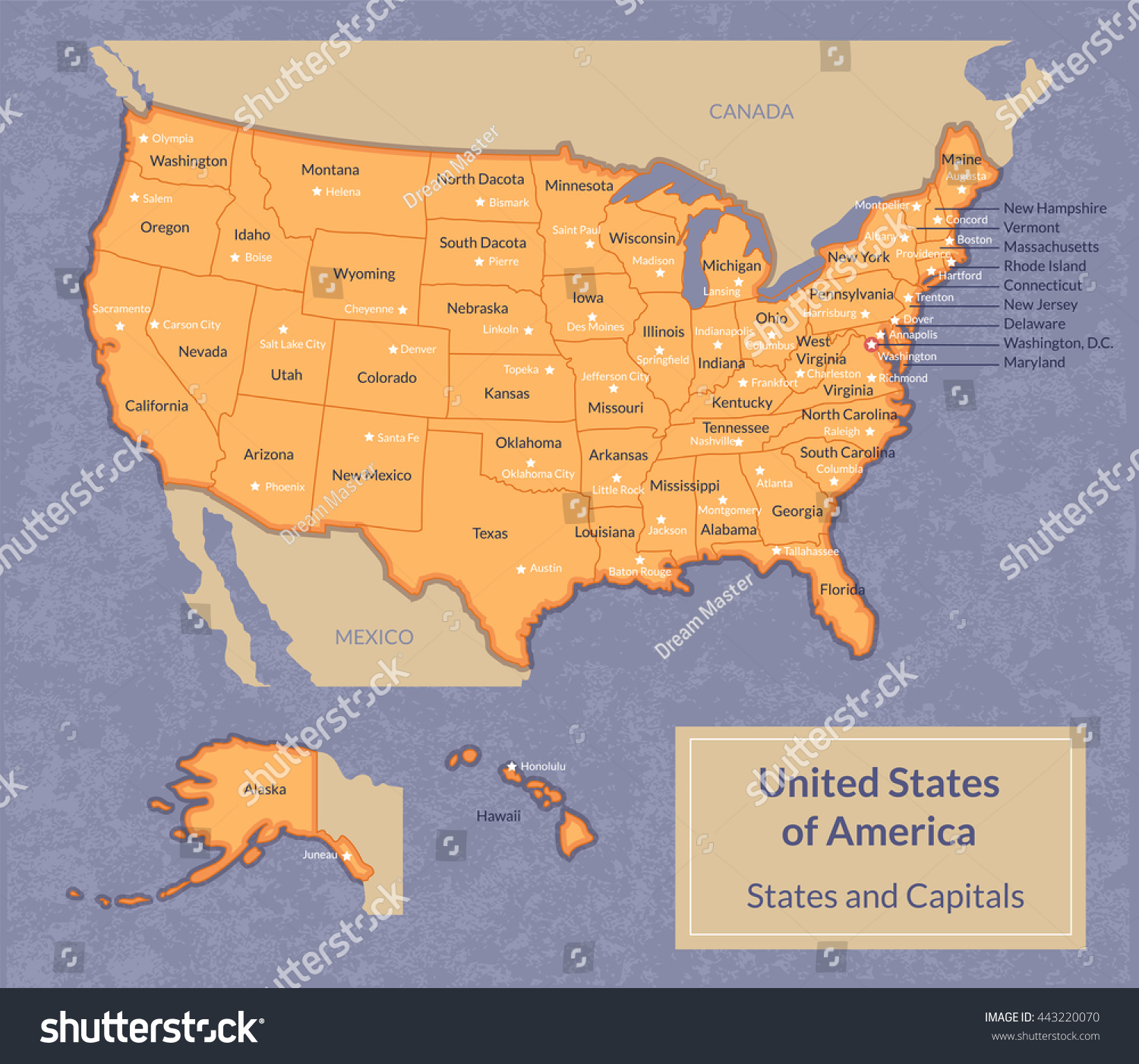 Vector Illustration Usa Map All States Stock Vector - Usa map with all states