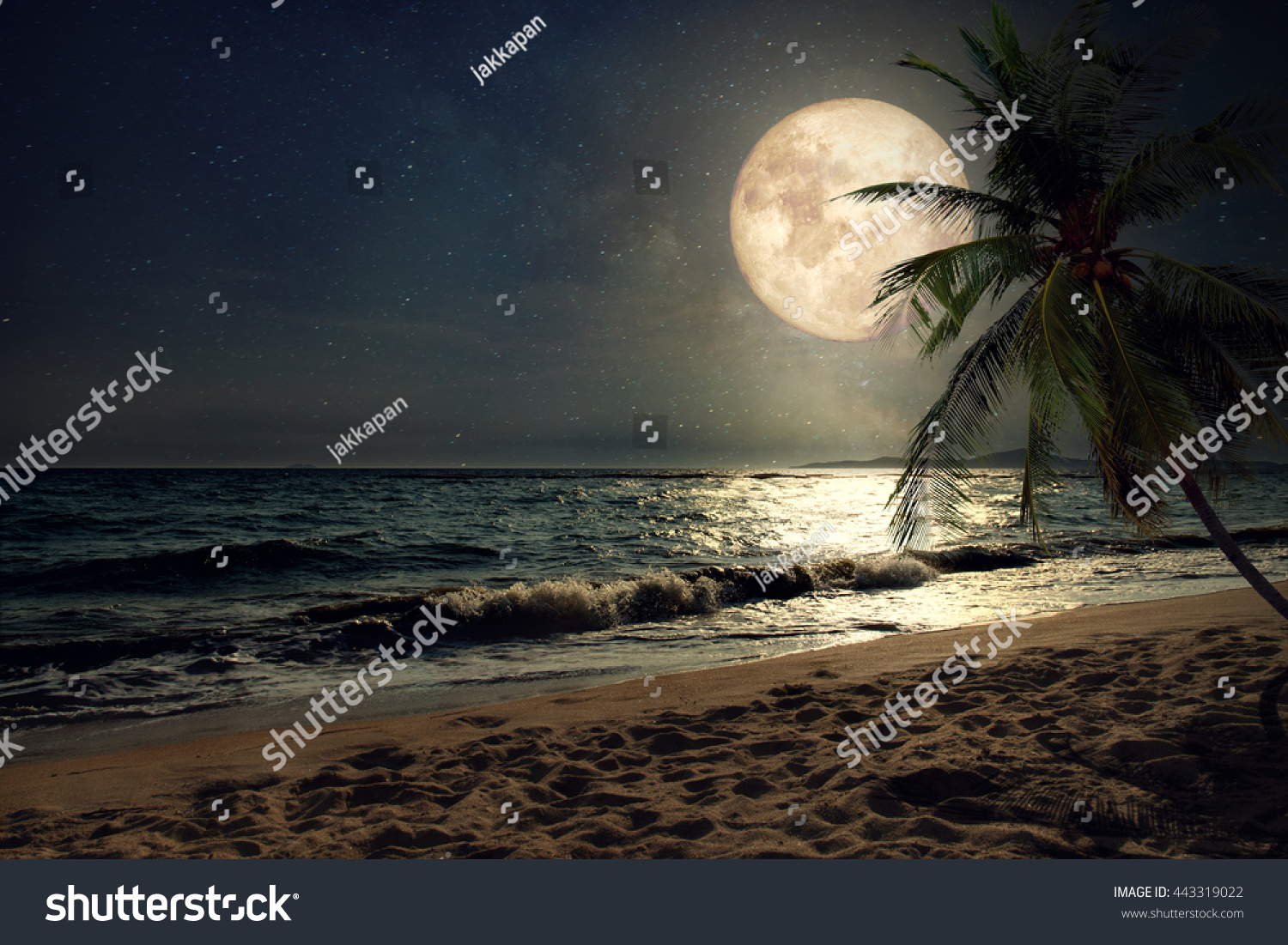 Beautiful Fantasy Tropical Beach Milky Way Stock Photo ...