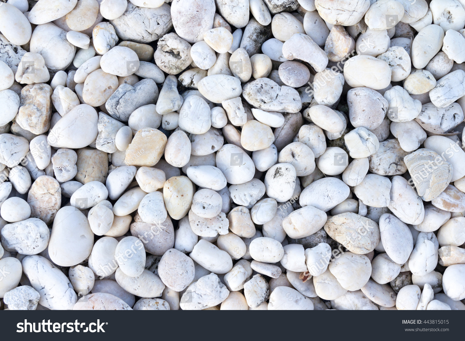 Smooth shaped white stones surface texture background stock photo - White River Stone Texture