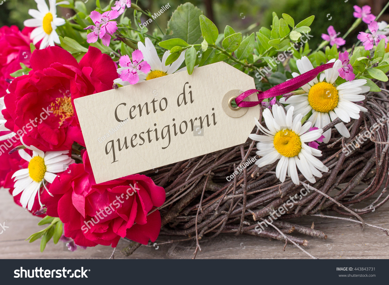 italian birthday card summer flowers text stock photo, Birthday card