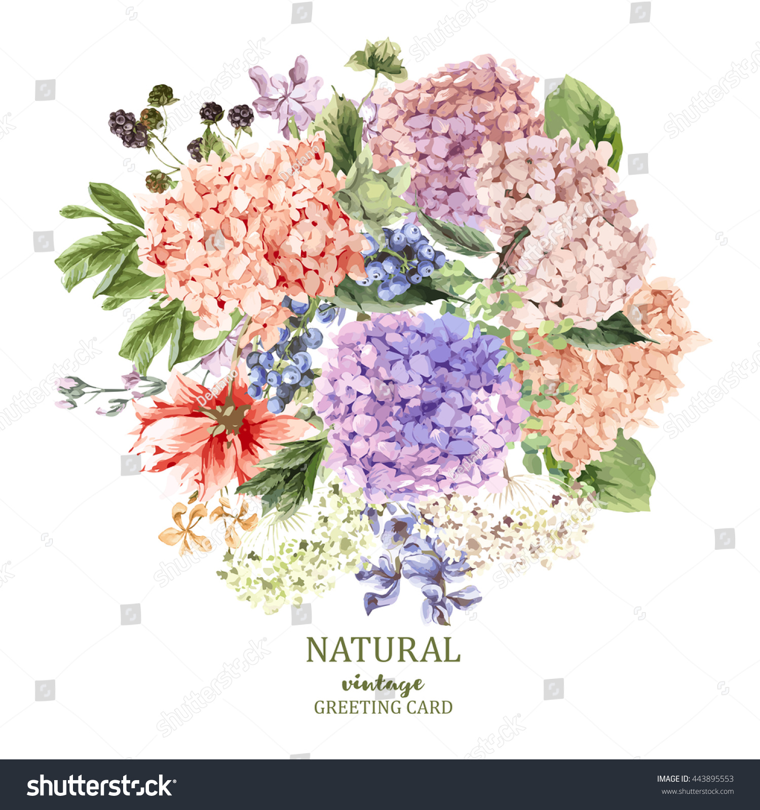 Summer Vintage Floral Greeting Card Blooming Stock Vector