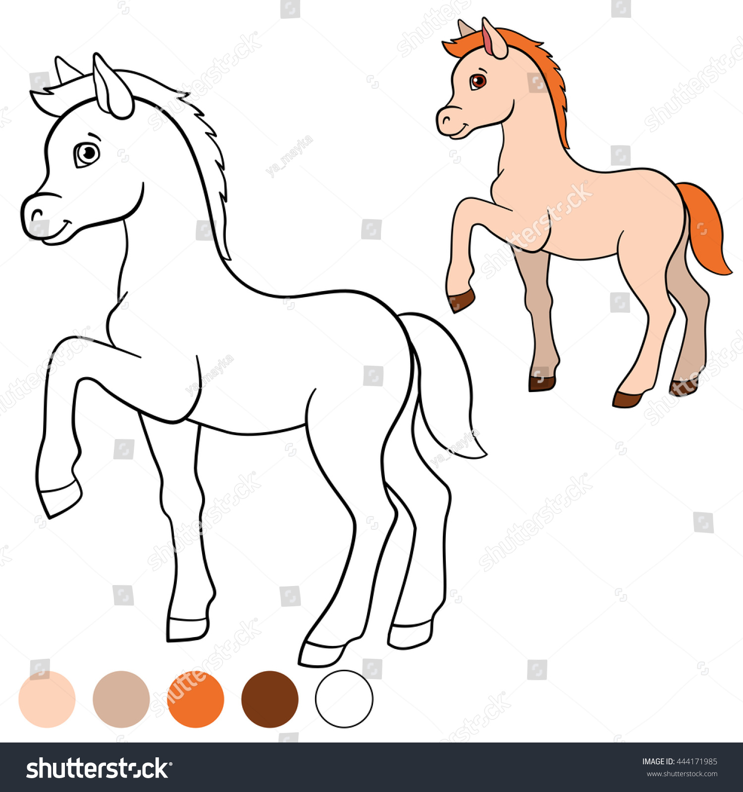 Coloring Page Color Me Horse Little Cute Foal Walks And Smiles