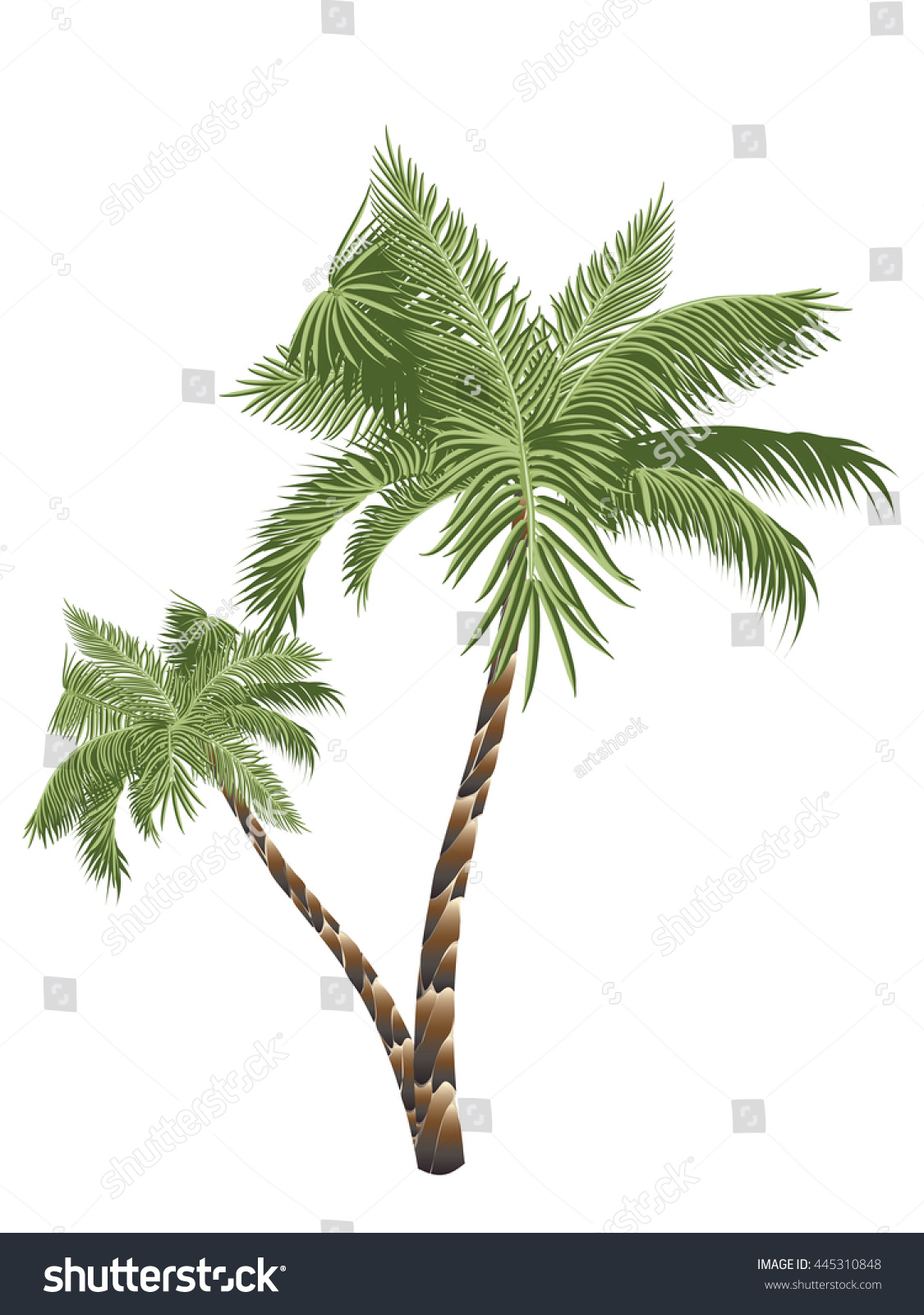 Two Colorful Palm Trees Illustration On Stock Vector (2018 ...