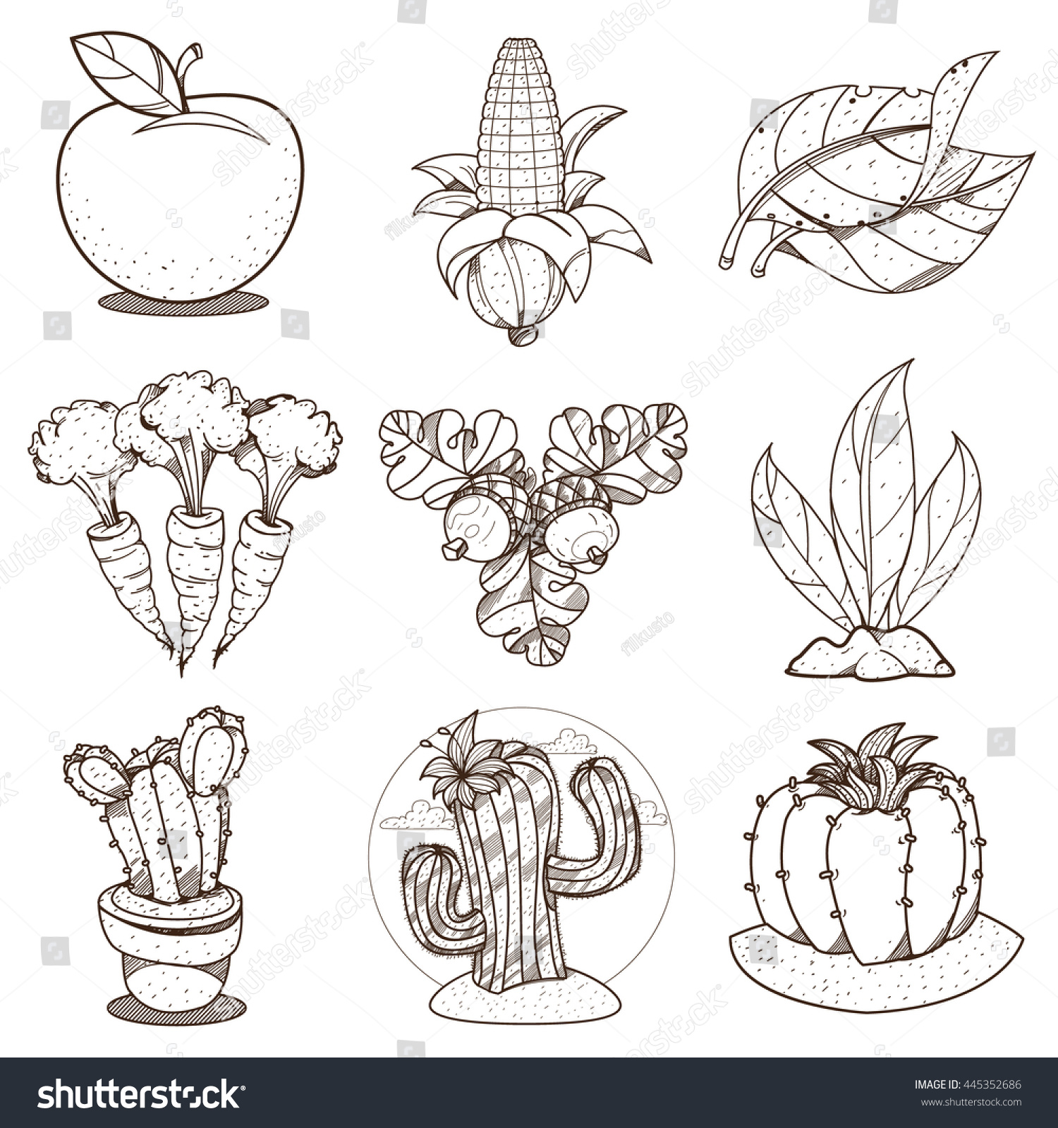 outline drawing coloring on farming apple stock vector 445352686