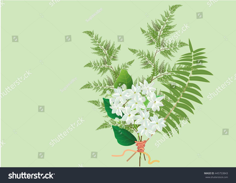 Jasmine flower bouquet two kind ferns stock vector 445753843 jasmine flower bouquet with two kind of ferns hand drawn vector illustration izmirmasajfo