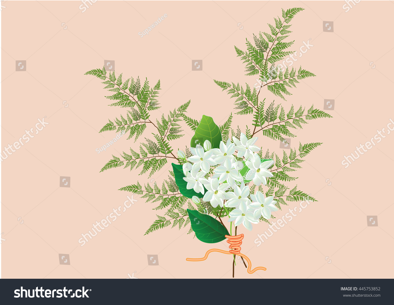 Jasmine flower bouquet white jasmine two stock vector 445753852 jasmine flower bouquet with white jasmine and two kind of ferns hand drawn vector illustration izmirmasajfo Image collections