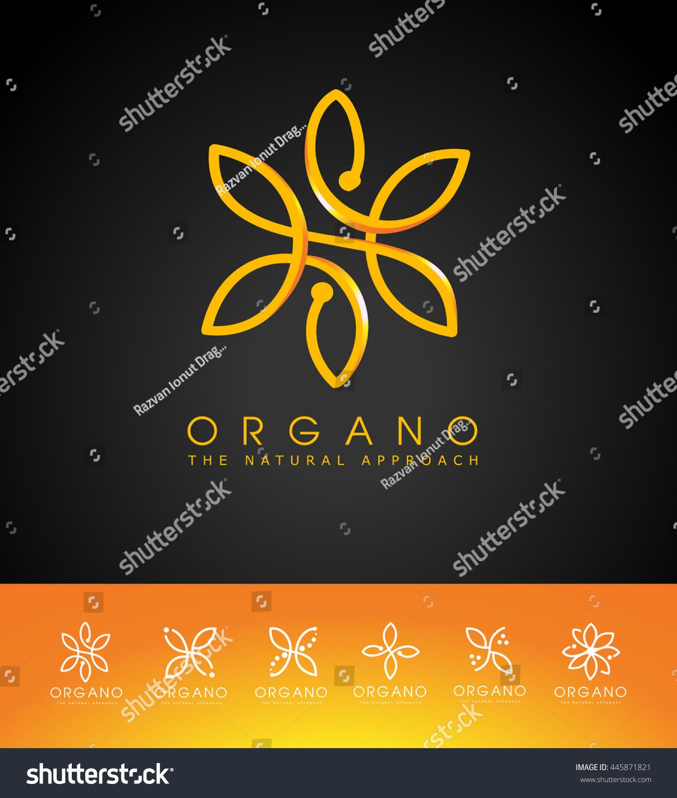creative flower logo linear flower design stock vector