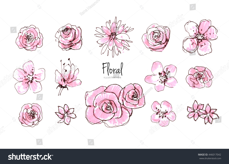 Line Art Watercolor : Ink pencil watercolor flower sketch line stock