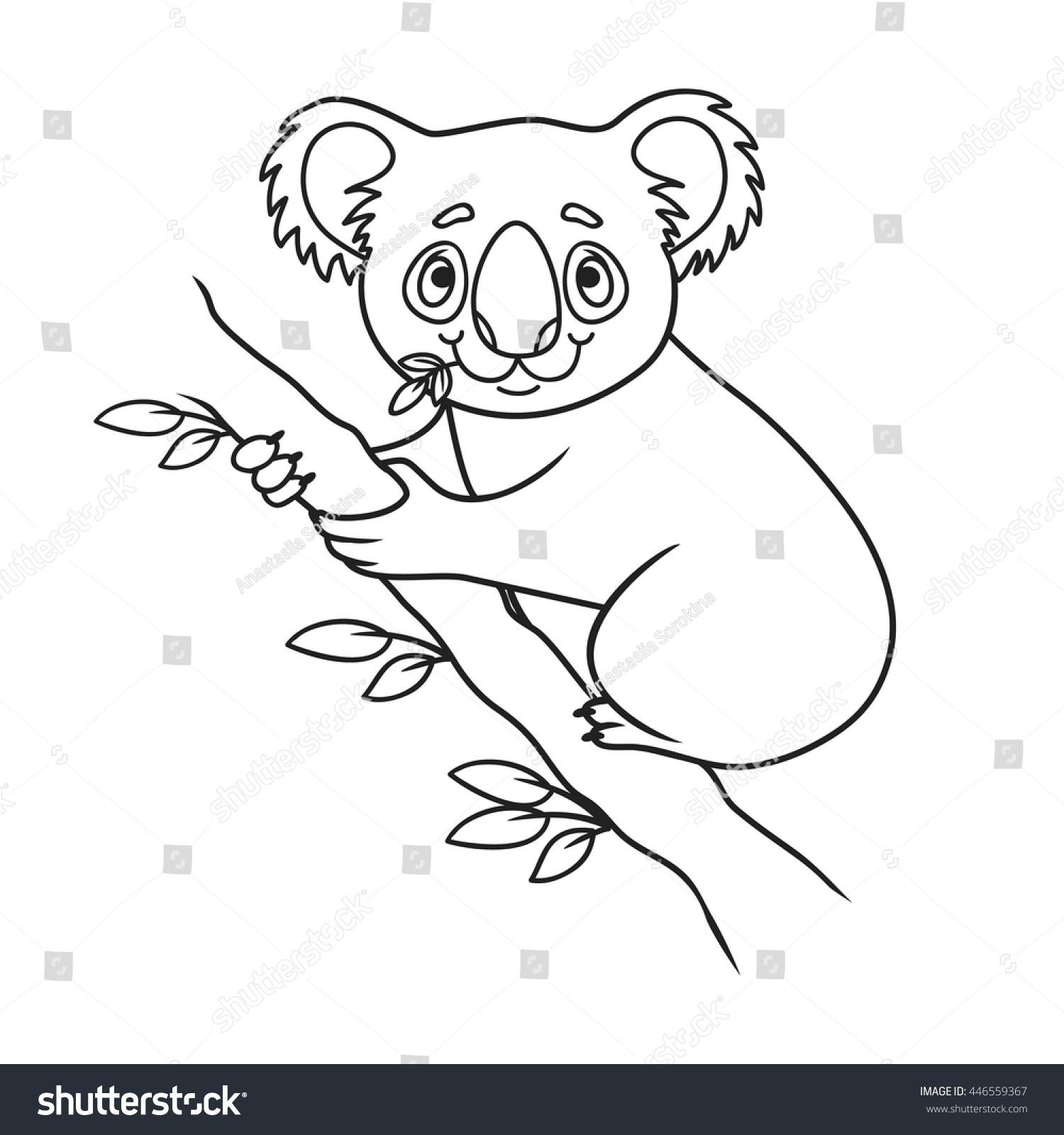 Cartoon Koala Coloring Book Vector Illustration Of Cute Animal Doodle