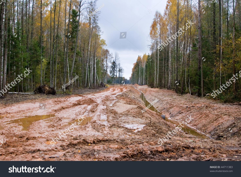 latvian autumn forest river - photo #14