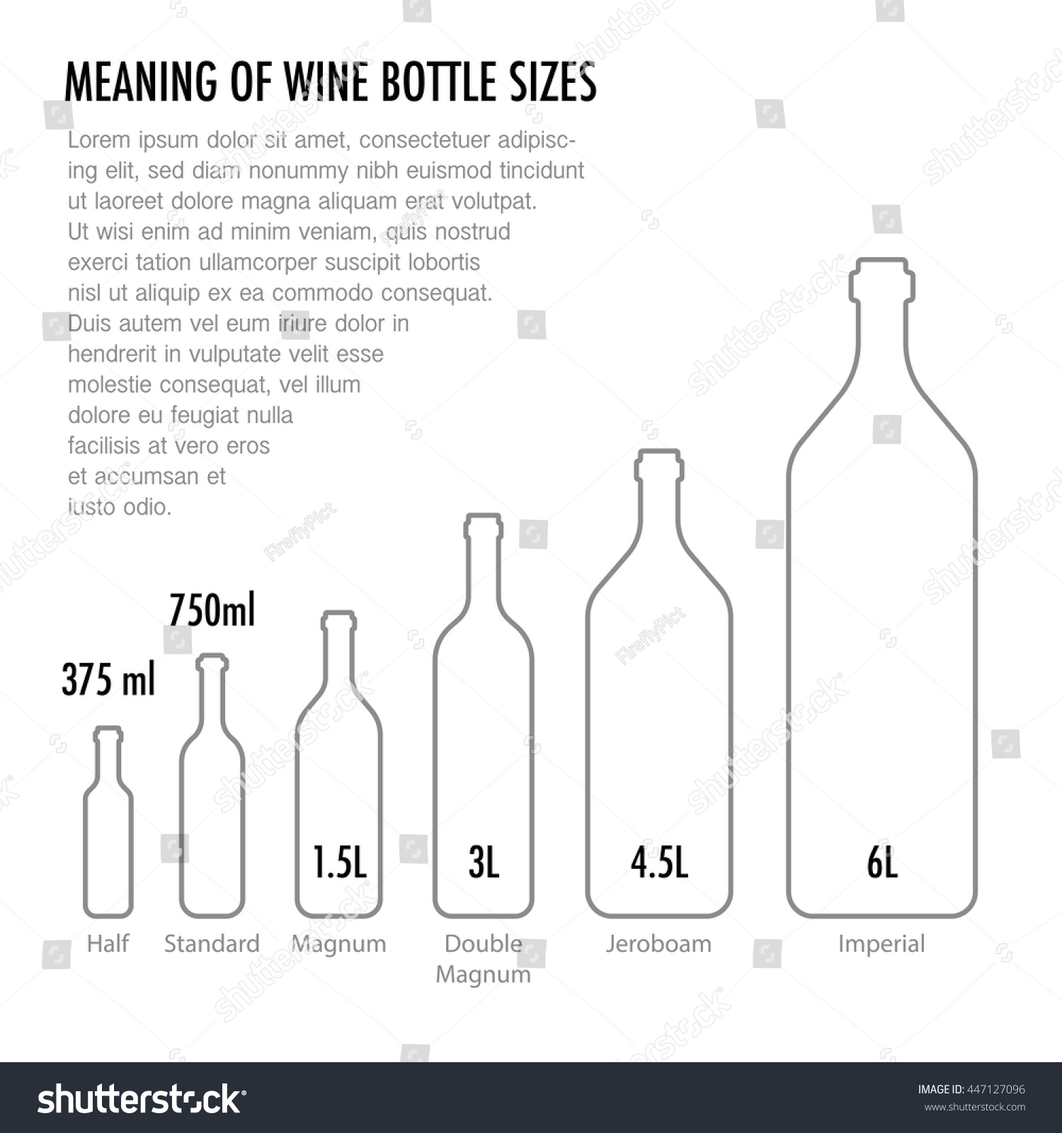 Meaning Wine Bottle Size Typography Poster Stock Vector