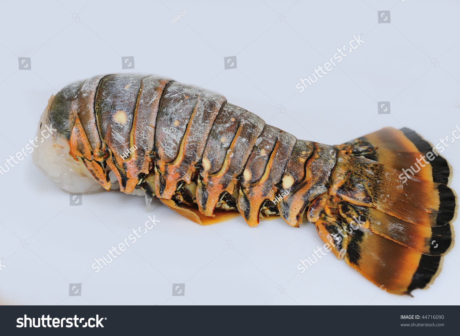 Lobster Tail Uncooked ...
