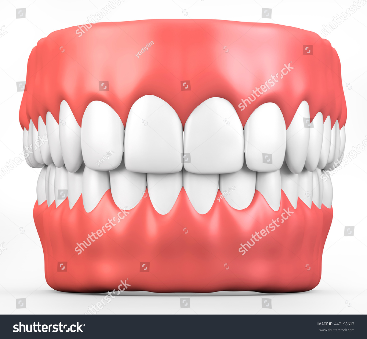 3D illustration teeth and gum model dental concept