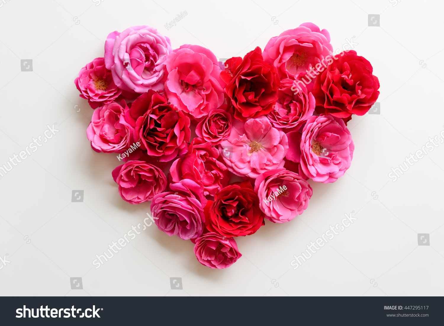 Heart symbol made pink roses on stock photo image royalty free heart symbol made of pink roses on white background flat lay beautiful flowers roses izmirmasajfo