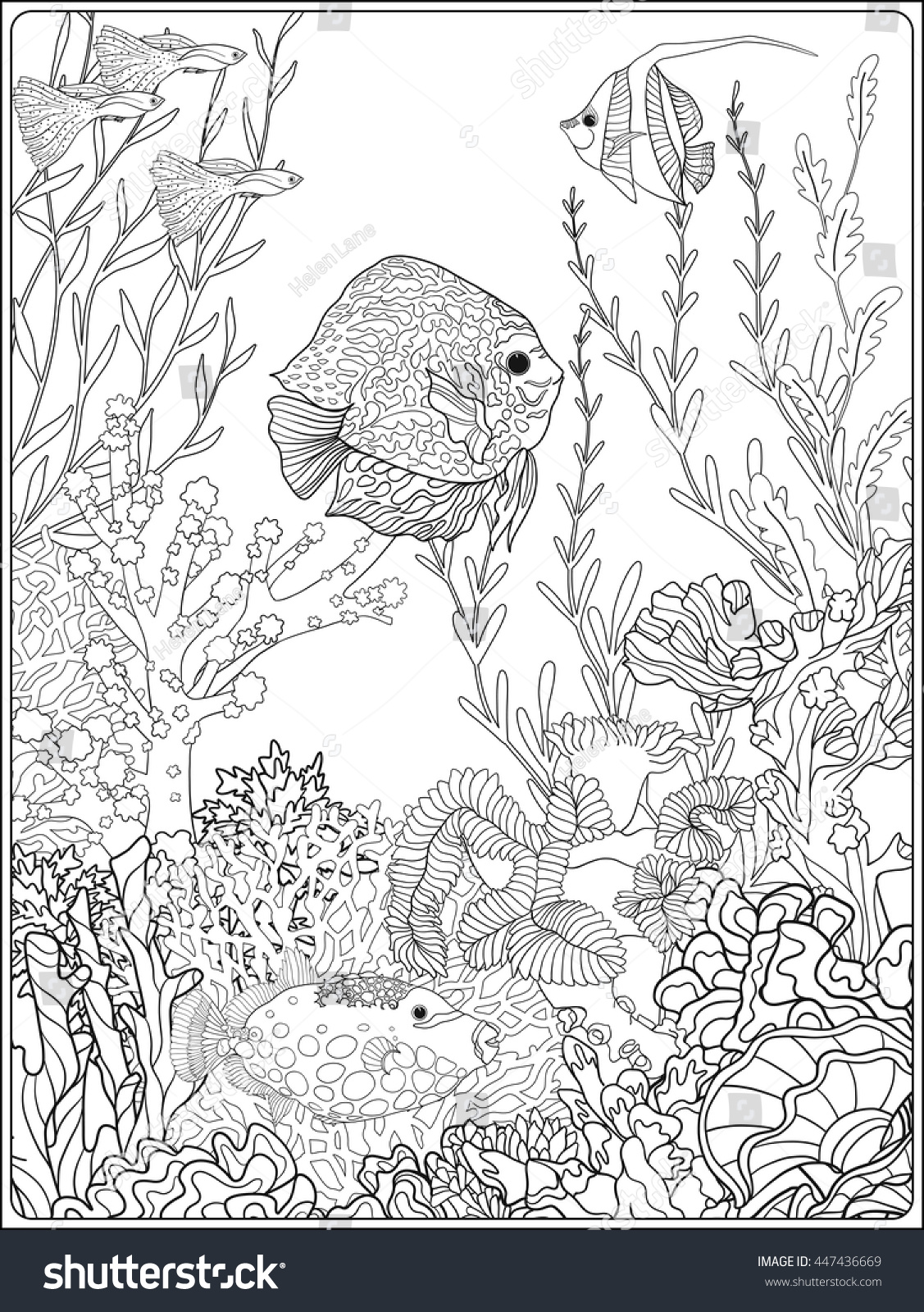 Adult Coloring Book Coloring Page Underwater Stock Vector 447436669