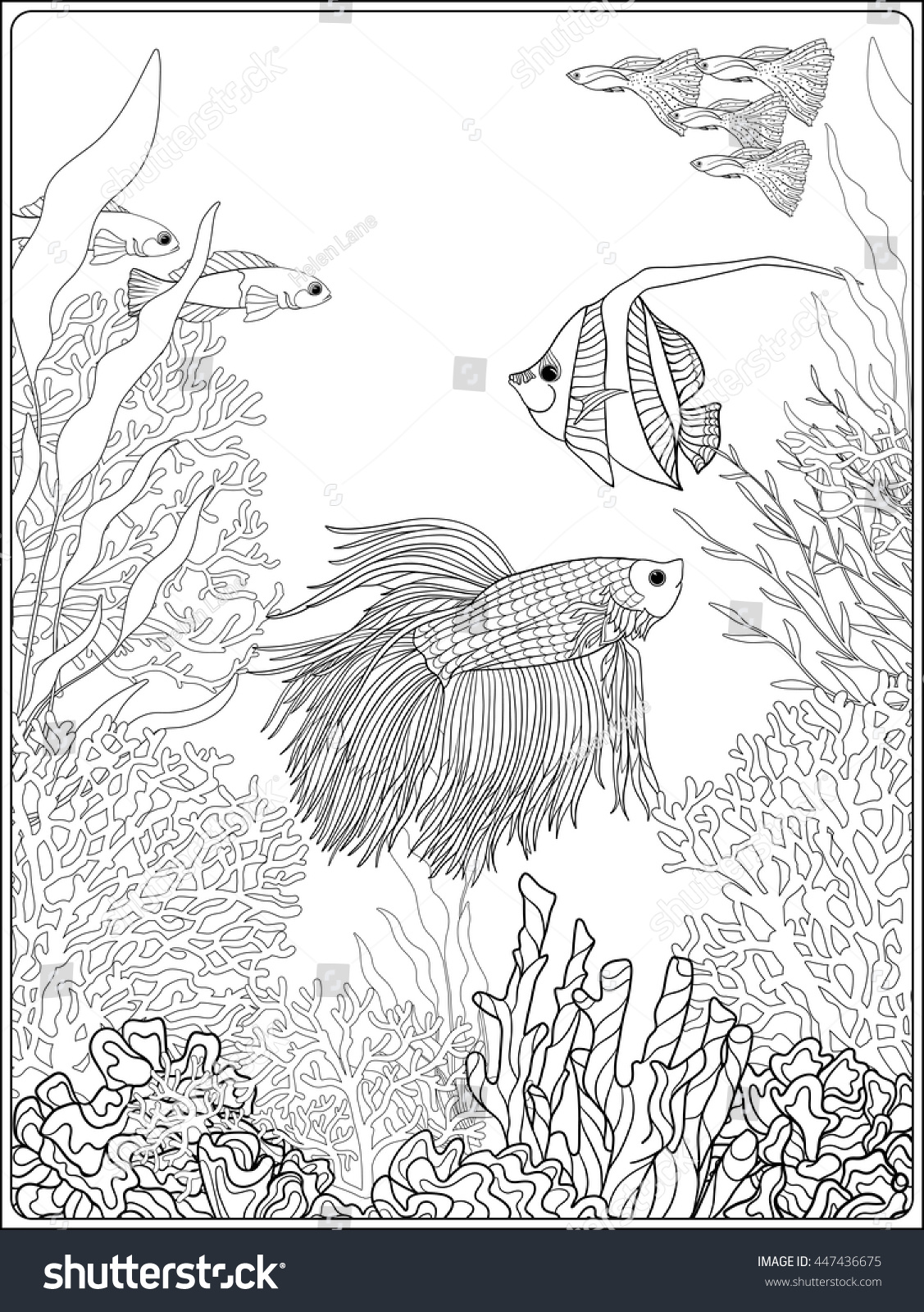 100 coloring pages underwater coloring book coloring page with