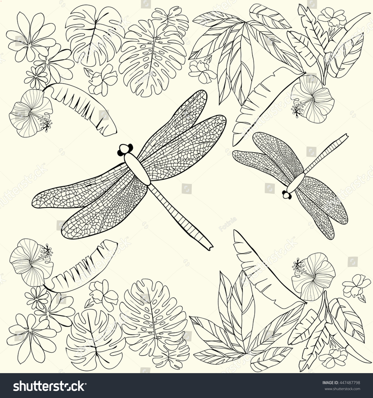 Vector Hand Drawn Tropical Flowers Leaves And Dragonflies Coloring Book For Adult