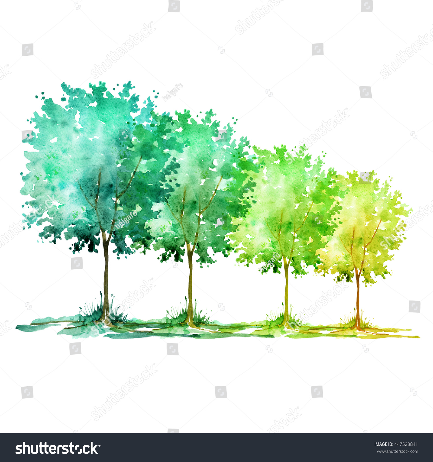 Watercolor Group Trees On White Background Stock Illustration ...