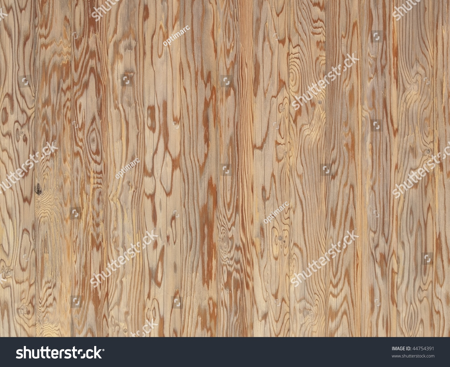 Asian spruce (tsuga) wood paneling texture with magnificent wood grain - Asian Spruce Tsuga Wood Paneling Texture Stock Photo 44754391