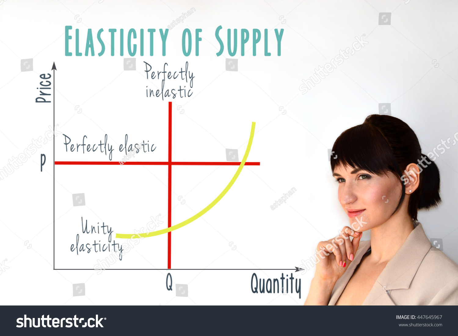 Price Elasticity Supply Graph Marketing Economic Stock Photo Edit Now 447645967