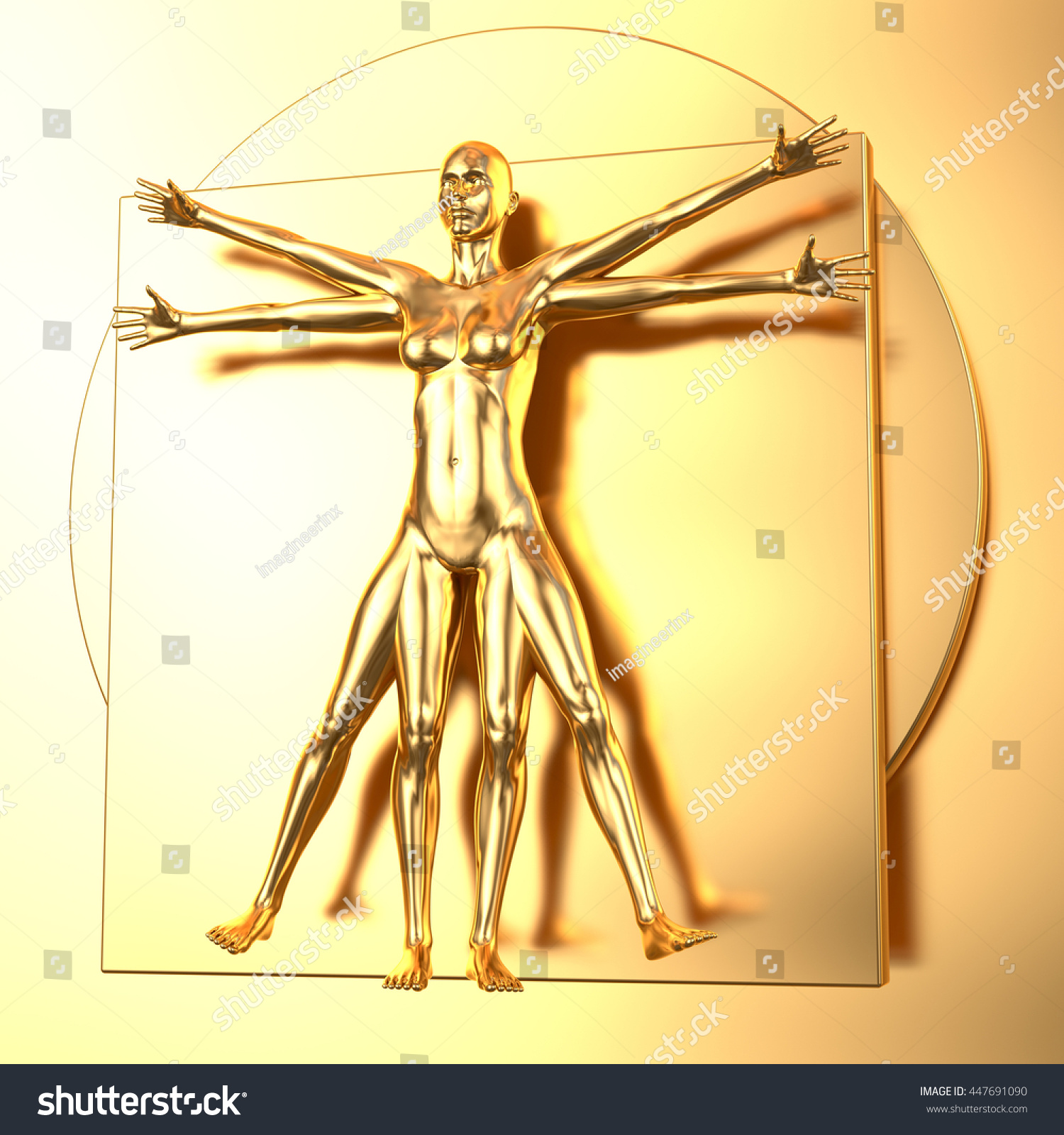 Reflecting Golden Leonardo Da Vincis Vitruvian Stock Illustration ...